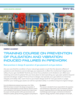 Training: Prevention of pulsation and vibration